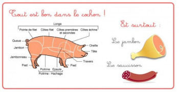 aliment-cochon_reference.jpg